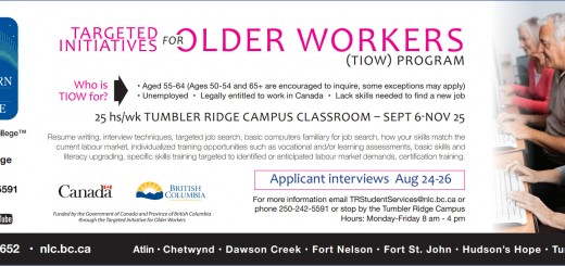 Targeted Initiatives for Older Workers